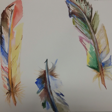 Farbige Federn / Coloured feathers. Randnotiz {Bleistift} 2017