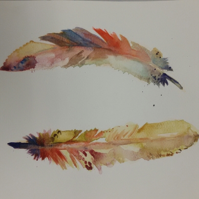 Farbige Federn / Coloured feathers. Randnotiz {Bleistift} 2016